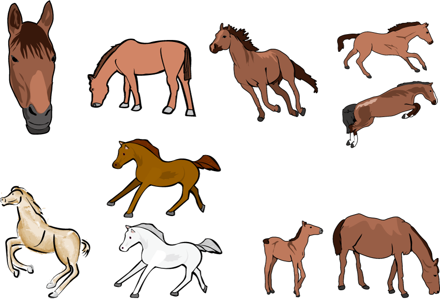フリーイラスト 10種類の馬のセット