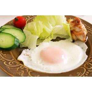 フリー写真, 食べ物(食料), 料理, 朝食, 卵料理, 目玉焼き, サラダ, レタス, キュウリ, ミニトマト