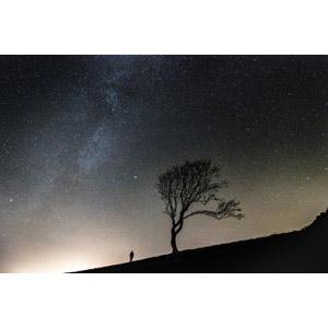 フリー写真, 風景, 夜, 夜空, 星(スター), 天の川, 樹木, シルエット(人物), 人と風景