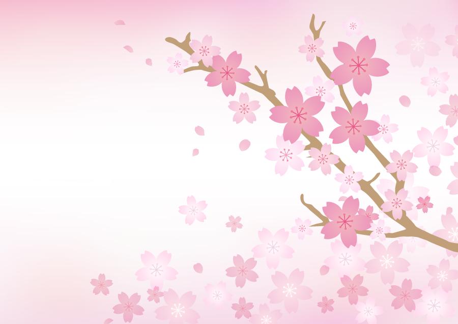 フリーイラスト 桜の花とピンク色の背景