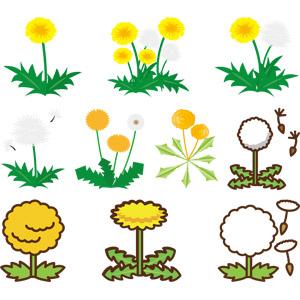 フリーイラスト, ベクター画像, AI, 植物, 花, 雑草, 蒲公英(タンポポ), 綿毛, 黄色の花