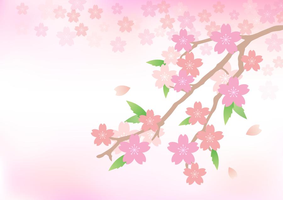 フリーイラスト 桜の花と枝と花びらの背景