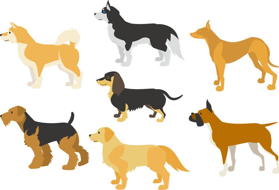 フリーイラスト 柴犬などの7種類の犬のセット