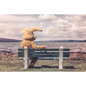 フリー写真, 着ぐるみ, 座る(ベンチ), ベンチ, 河川