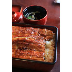 フリー写真, 食べ物(食料), 料理, 魚介料理, 丼物, 鰻重(うな重), 鰻(うなぎ), 土用の丑の日, 7月, 8月