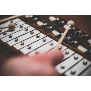 フリー写真, 音楽, 楽器, 旋律打楽器, 鉄琴, 演奏する