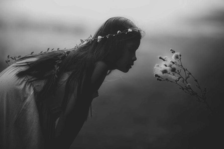 フリー写真 綿毛の植物と外国の女の子