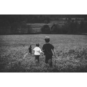 フリー写真, 人物, 子供, 男の子, 外国の男の子, 三人, 後ろ姿, 走る, 草むら, 人と風景, 兄弟(姉妹), モノクロ