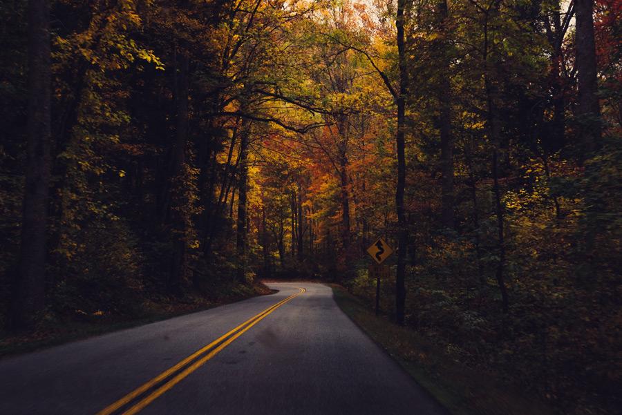 フリー写真 峠道の風景