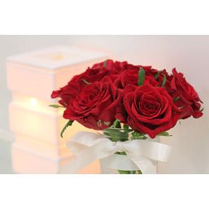 フリー写真, 植物, 花, 薔薇(バラ), アロマライト(アロマランプ), アロマセラピー(アロマテラピー)