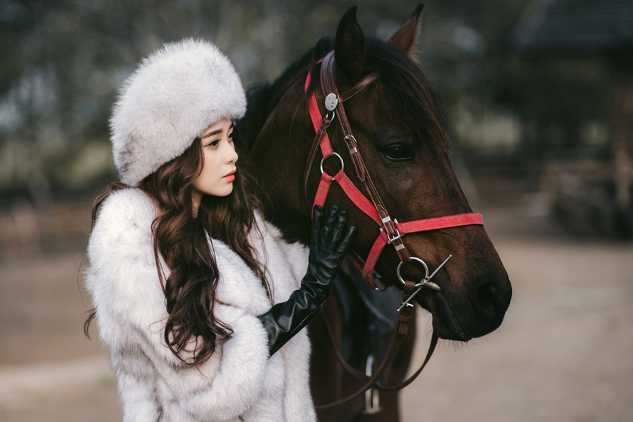 フリー写真 横を向いている女性と馬