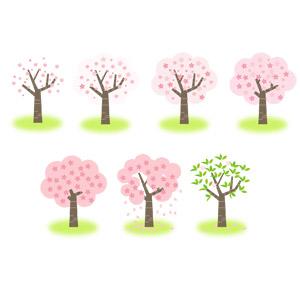 フリーイラスト, ベクター画像, EPS, 樹木, 花, 桜(サクラ), 春