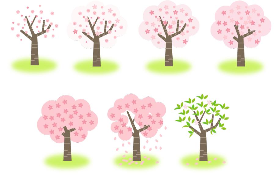 フリーイラスト 7種類のサクラの木のセット