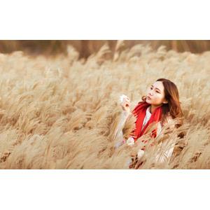 フリー写真, 人物, 女性, アジア人女性, 中国人, 人と風景, 植物, 雑草, 草むら, ヨシ(アシ)