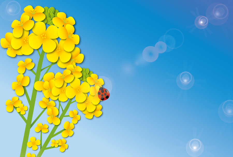フリーイラスト 青空と菜の花とてんとう虫の風景