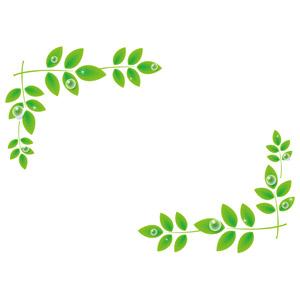 フリーイラスト, ベクター画像, EPS, 背景, フレーム, 対角フレーム, 植物, 葉っぱ, 水滴(雫), 新緑