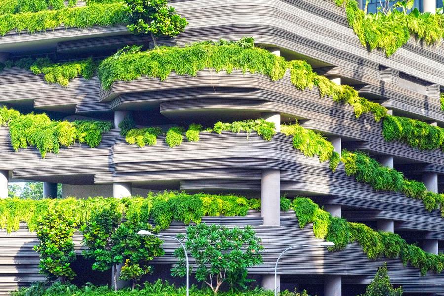 フリー写真 植物に覆われる建物の風景