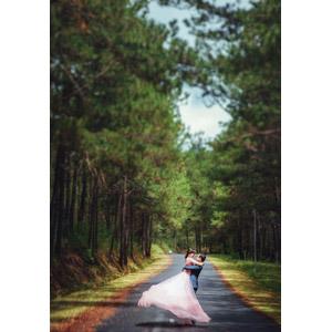 フリー写真, 人物, カップル, 花婿(新郎), 花嫁(新婦), 結婚式(ブライダル), 抱き上げる, 人と風景, 小道, 二人