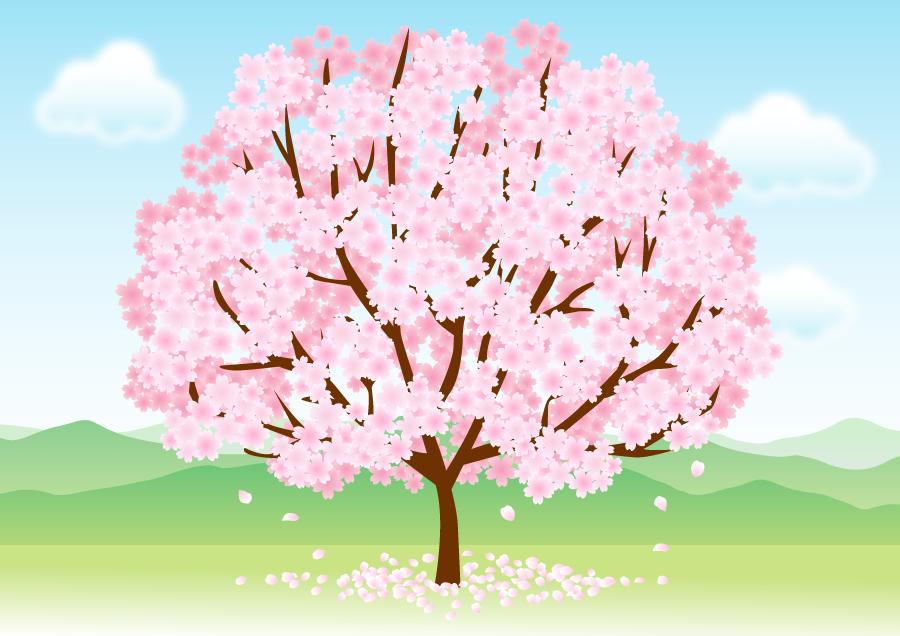 フリーイラスト 満開の桜の木のある風景