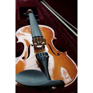 フリー写真, 音楽, 楽器, 弦楽器, バイオリン(ヴァイオリン)