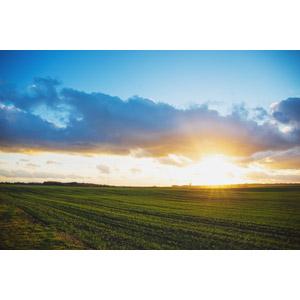 フリー写真, 風景, 牧草地, 夕暮れ(夕方), 夕日, ポーランドの風景
