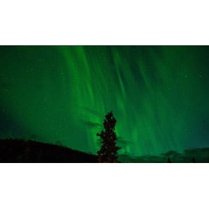 フリー写真, 風景, 自然, 夜, 夜空, オーロラ, アメリカの風景, アラスカ州, 緑色(グリーン)