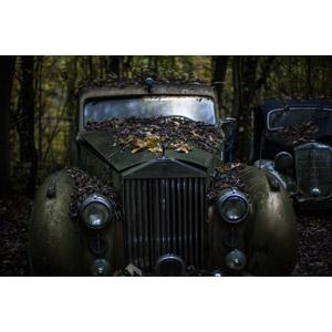 フリー写真, 乗り物, 自動車, 廃車(放置自動車), ロールス・ロイス, ロールス・ロイス・シルヴァーレイス