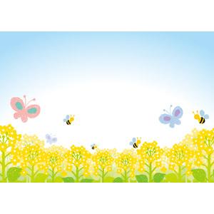 フリーイラスト, ベクター画像, AI, 花, 畑, 菜の花(アブラナ), 黄色の花, 蝶(チョウ), 蜂(ハチ), 青空, 春