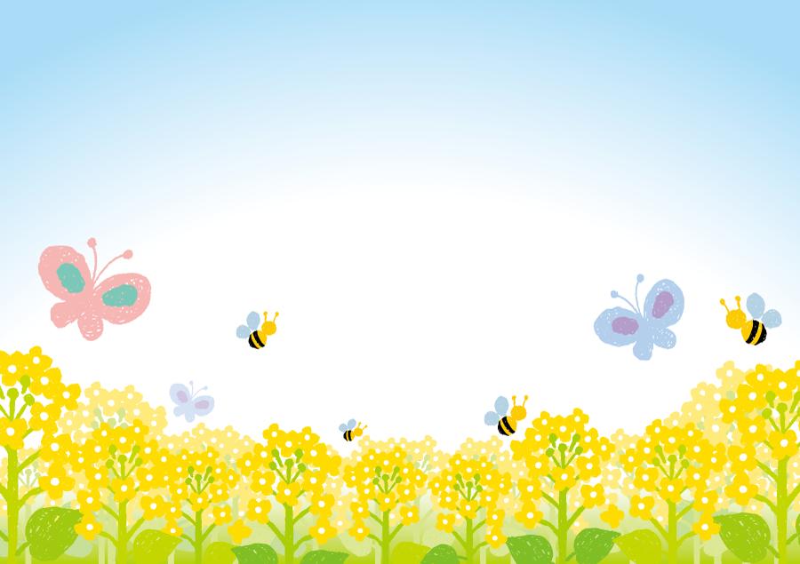 フリーイラスト 菜の花畑とチョウとハチ