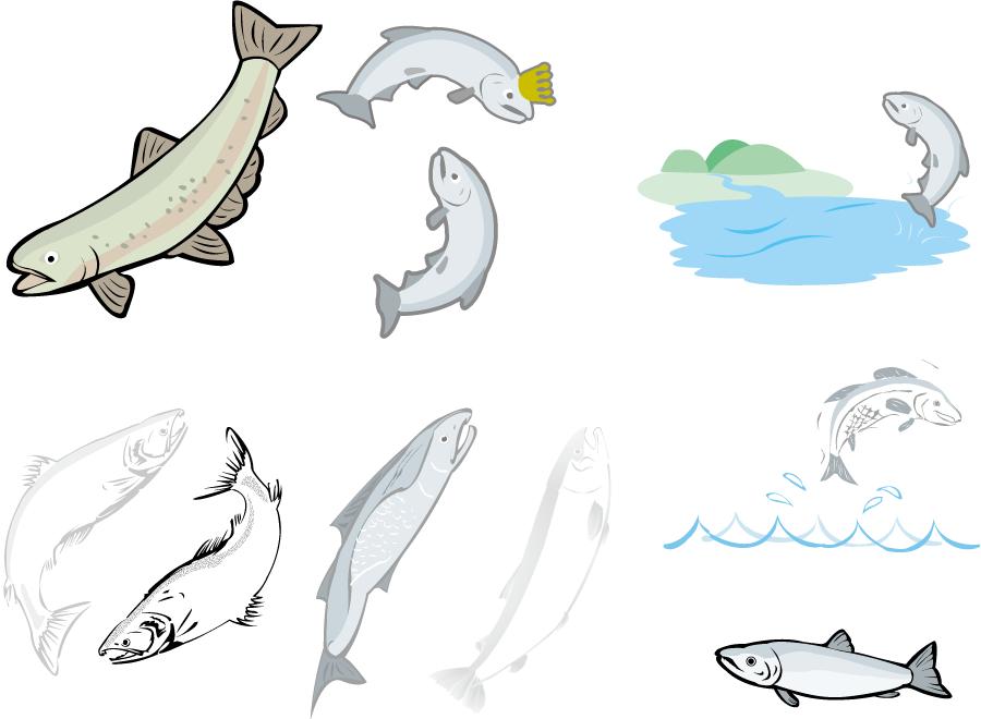 フリーイラスト 10種類の鮭のセット