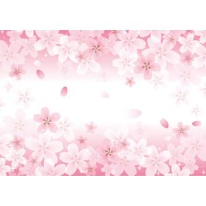 フリーイラスト, ベクター画像, EPS, 背景, 花, 桜(サクラ), ピンク色の花, 春, ピンク色, 花びら