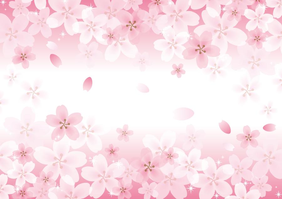 フリーイラスト 満開の桜の花の背景