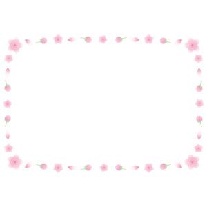 フリーイラスト, ベクター画像, EPS, 背景, フレーム, 囲みフレーム, 花, 桜(サクラ), 春, ピンク色の花, 蕾(つぼみ), 花びら