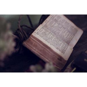 フリー写真, 本(書籍), 聖書