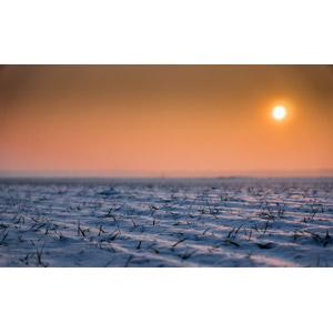 フリー写真, 風景, 自然, 夕暮れ(夕方), 夕焼け, 夕日, 雪, 冬