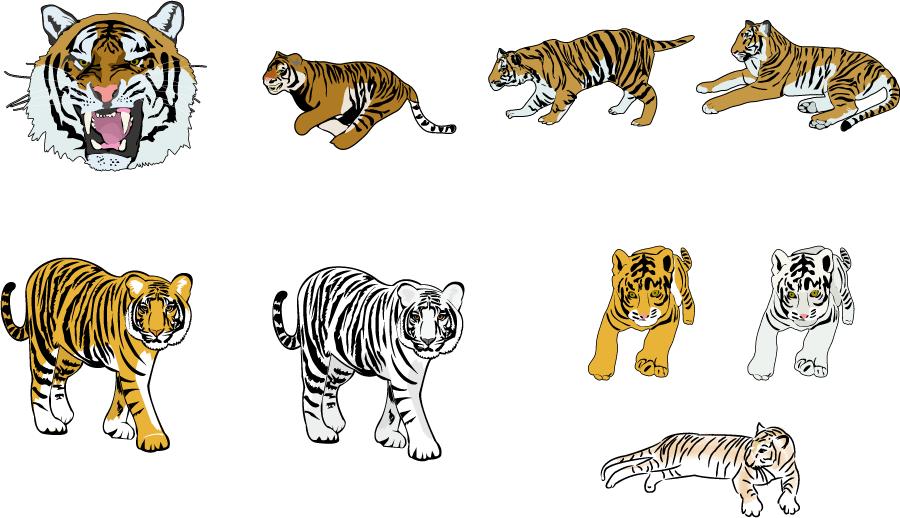フリーイラスト 9種類のトラとホワイトタイガーのセット