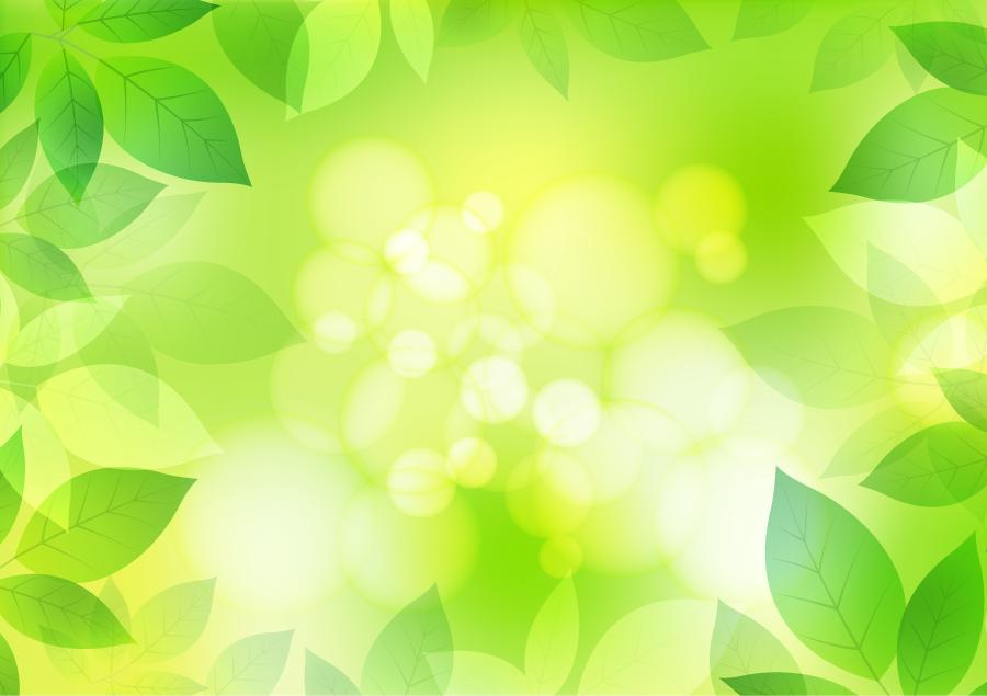 フリーイラスト 新緑の葉と光の玉ボケの飾り枠