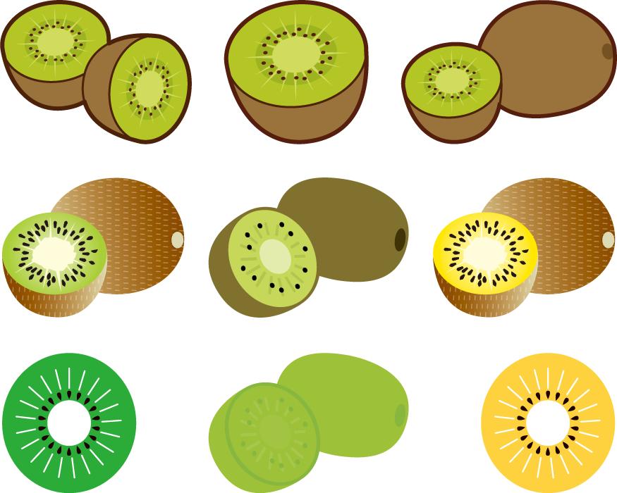 フリーイラスト 9種類のキウイフルーツのセット
