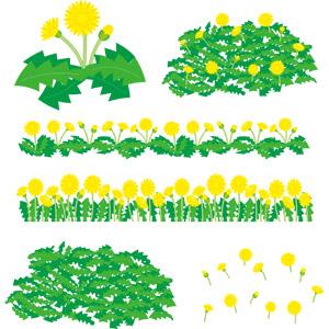 フリーイラスト, ベクター画像, AI, 植物, 花, 雑草, 蒲公英(タンポポ), 黄色の花