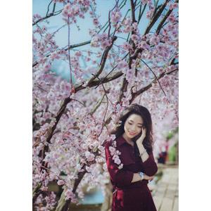 フリー写真, 人物, 女性, アジア人女性, ベトナム人, 女性(00147), 人と花, 桜(サクラ), ピンク色の花, こめかみに手を当てる