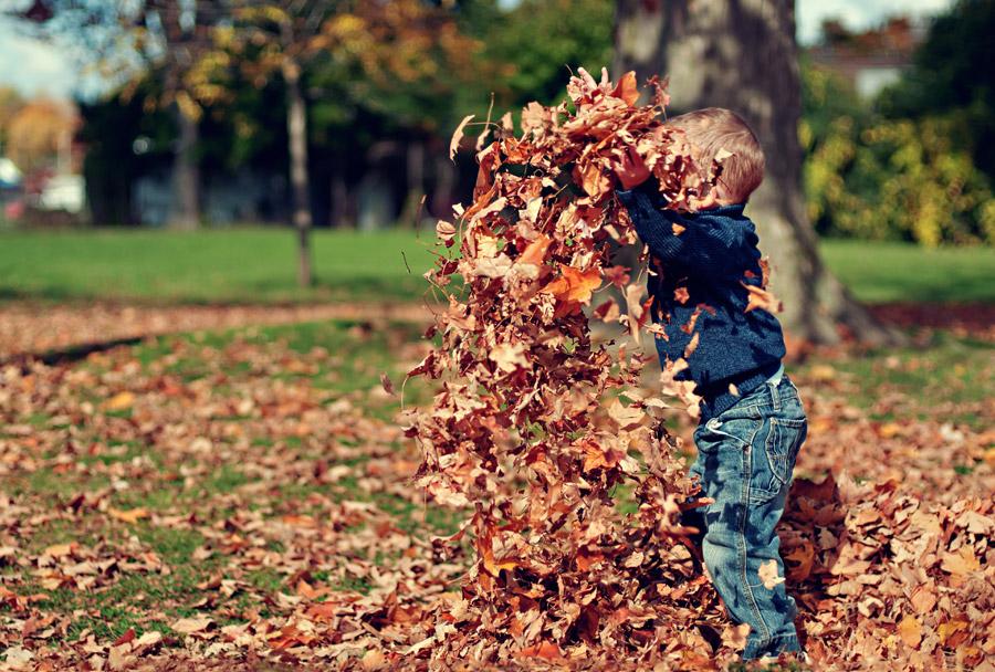 フリー写真 落ち葉で遊ぶ外国の男の子