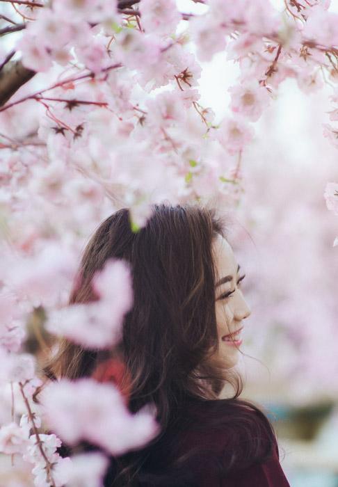 フリー写真 桜の花と笑顔の女性の横顔