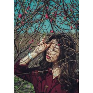 フリー写真, 人物, 女性, アジア人女性, ベトナム人, 女性(00147), 人と花, 梅(ウメ), ピンク色の花, 枝, 目を閉じる