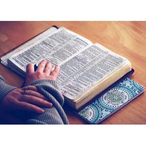 フリー写真, 人体, 手, 本(書籍), 聖書, 勉強(学習)