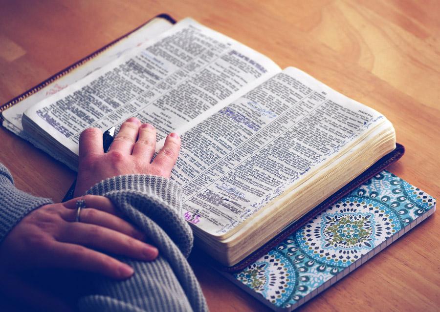 フリー写真 聖書を勉強する女性の手