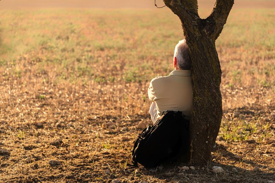 フリー写真 木の前に座って休憩中のシニア男性の後ろ姿