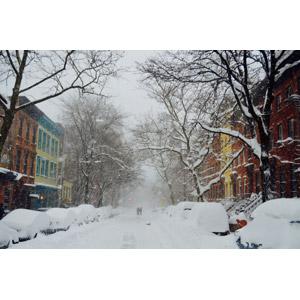 フリー写真, 風景, 建造物, 建築物, 街並み(町並み), 雪, 冬, 道路, 樹木, アメリカの風景, ニューヨーク