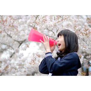 フリー写真, 人物, 少女, アジアの少女, 日本人, 少女(00048), 学生(生徒), 高校生, セーラー服(学生服), 応援する, メガホン(拡声器), 叫ぶ, 桜(サクラ), 春, 人と花