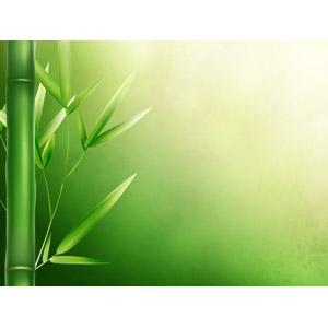 フリーイラスト, 背景, 植物, 竹(タケ), 緑色(グリーン)