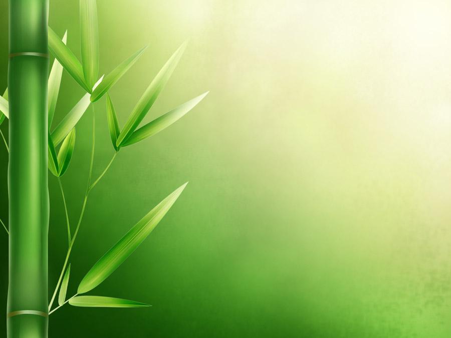 フリーイラスト 竹と緑色の背景